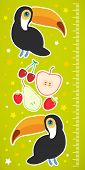 picture of measuring height  - Toucan Bird and the apple pear strawberry cherry on green background Children height meter wall sticker - JPG