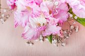 pic of gladiolus  - branch of pink gladiolus on wooden table - JPG