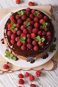 picture of sponge-cake  - Sponge cake with chocolate and fresh raspberries close - JPG
