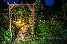 picture of illuminated  - Evening in the Garden - JPG