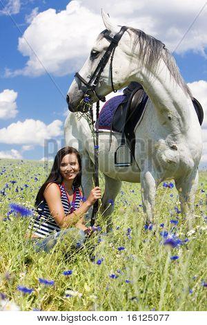 Постер, плакат: Конный спорт с конем на лугу, холст на подрамнике