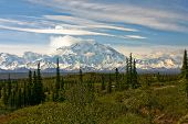 image of denali national park  - Mt McKinley in Denali National Park taken from Wonder Lake - JPG