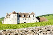 pic of clos  - Clos Blanc De Vougeot Castle - JPG