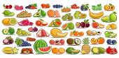 Vector Set Of Fresh Fruits, 49 Cut Out Organic Fruits And Berries, Group Of Colorful Design Signs Fo poster