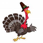 Thanksgiving Cartoon Turkey Bird. Vector Illustration Of Funny Turkey Character Clipart poster