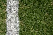 picture of ncaa  - Roughed up grass field and yardline for football background - JPG