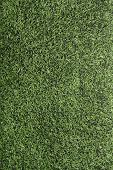 Artificial Turf of an American Football Field, vertical