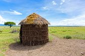 Maasai 's shelter, circular shaped thatch house made by women using timber poles as framework, int poster