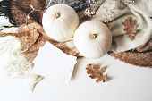 Autumn Cozy Composition. Blank Card Mockup Scene. White Pumpkins, Dry Oak Leaves, Christmas Lights A poster