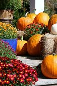 stock photo of entryway  - Pumpkins and flowers in colorful pot used to decorate entryway - JPG
