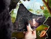 foto of magical-mushroom  - Wonderland jester standing behind broken mirror revealing a magical hidden wonderland of enchanted creatures in fairy tale landscapes - JPG