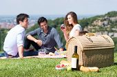 stock photo of nic  - Picnic Basket In Front Of Group Of Friend Enjoying Wine Outdoor - JPG