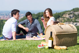 pic of nic  - Picnic Basket In Front Of Group Of Friend Enjoying Wine Outdoor - JPG