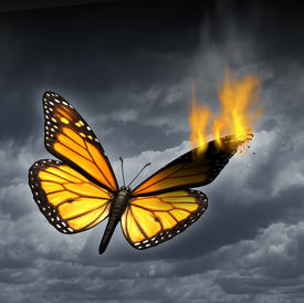 pic of heartbreaking  - Creative crisis business concept as a monarch butterfly in distress with a burning wing as a metaphor for problems in creativity and managing human sadness and depression - JPG