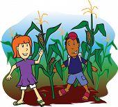 stock photo of corn stalk  - School kids playing in a corn field - JPG