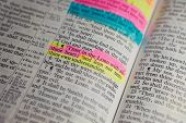pic of scriptures  - Famous Bible Scripture Verse From Proverbs 3 - JPG