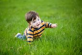 stock photo of crawling  - little boy crawling on a green lawn - JPG