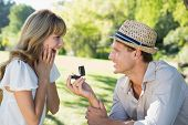 picture of proposal  - Man surprising his girlfriend with a proposal in the park on a sunny day - JPG