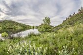 picture of horsetooth reservoir  - green springtime landscape at Colorado foothills  - JPG