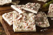foto of peppermint  - Homemade Holiday Peppermint Bark with White and Dark Chocolate - JPG