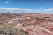 picture of petrified  - Tawa Point, Painted Desert, Petrified Forest National Park, on Route 66, Arizona