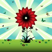 picture of red clover  - Colorful illustration with red flower - JPG