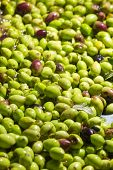 picture of virginity  - olives into small scale olive oil mill factory for extracting extra virgin olive oil - JPG