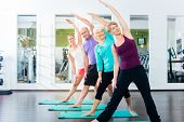 picture of gymnastics  - Group of senior people and young woman and men in fitness gym doing gymnastics  - JPG