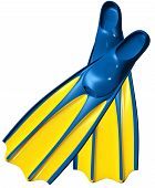image of fin  - a pair of swim fins or flippers with blue rubber and yellow plastic for deep - JPG