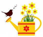 foto of daffodils  - vector daffodils in watering can and bird isolated on white background - JPG