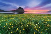 Landscape with a beautiful sunrise and the mountain. Yellow flowers in the lush grass in a meadow. T poster