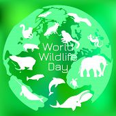 World Wildlife Day. The Concept Of An Environmental Event. Different Animals On The Background Of Th poster