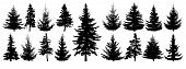 Forest Trees Set. Isolated Vector Silhouette. Coniferous Forest. Christmas Tree, Fir-tree, Pine, Pin poster