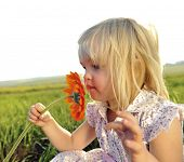 stock photo of young girls  - Adorable little girl smells the wild flowers in the meadow - JPG