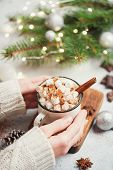 Holding Cup Of Hot Chocolate With Marshmallows And Cinnamon. Girl In Knitted Sweater Holding Hot Dri poster