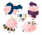 Set Of Cute Pigs. Pig In A Hat And Scarf, Pig-princess, Pig-unicorn.funny Cartoon Characters. Vector poster