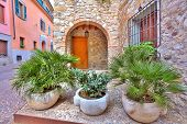 Stone pots with palms in front of entrance to typical italian house on narrow cobblestone street in