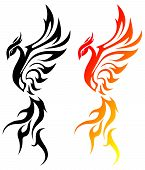 Picture of phoenix.