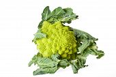 stock photo of crudites  - single romanesco vegetable isolated on white background - JPG