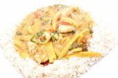 foto of snitch  - diced chicken in coconut curry sauce served with rice - JPG