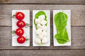 stock photo of basil leaves  - Tomatoes - JPG