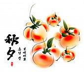 image of mid autumn  - Vector Ink Painting of Persimmons for Korean Chuseok  - JPG