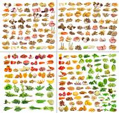 stock photo of fruit  - collection of Fruits and vegetable isolated on white background - JPG