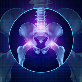 picture of vertebrates  - Back joint pain and human backache with skeleton showing the hip spine and vertebral column in glowing highlight as a medical health care concept for spinal surgery and therapy - JPG