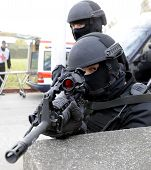 image of guns  - Special force police in action aiming gun