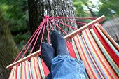 image of pov  - Happy feet swinging in colorful hammock in motion blurred forrest - JPG