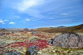 stock photo of mountain chain  - This photo was taken in the north of Kola Peninsula in Russia end of September 2014 - JPG