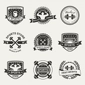 image of heavy equipment  - Set of various sports and fitness logo emblem graphics and icons - JPG