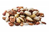 stock photo of hazelnut  - made from mixed kinds of nuts  - JPG