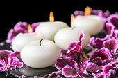 image of geranium  - beautiful spa still life of blooming dark purple geranium flower beads and candles in reflection water closeup - JPG